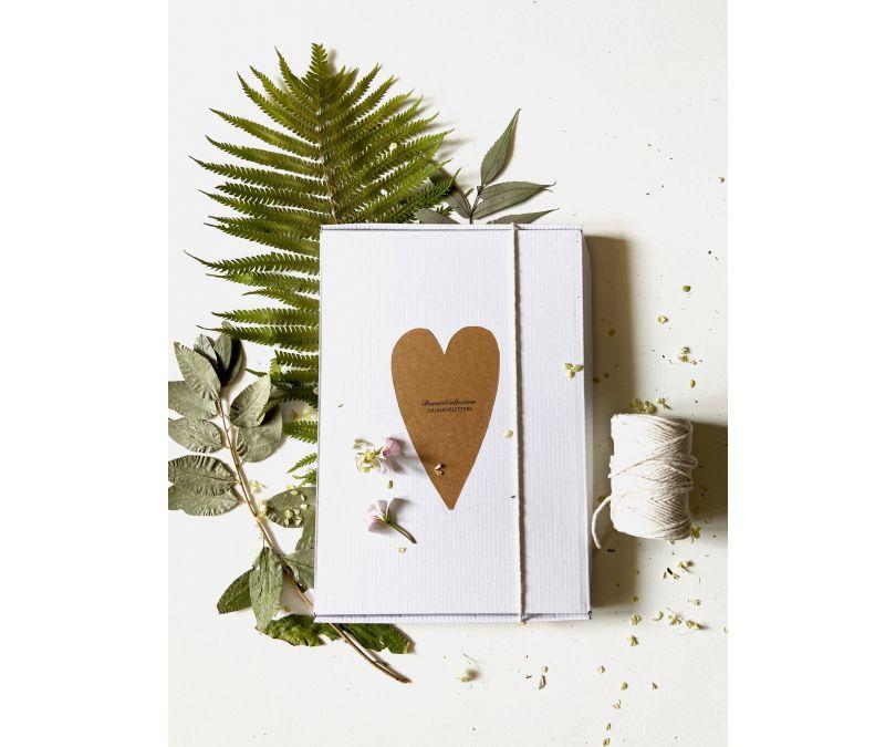 Botaniczna dekoracja ścienna akacja w grafitowej ramce julia love letters